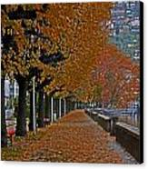 Locarno In Autumn Canvas Print