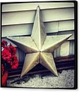 Lone Star Texas Canvas Print by Dana Coplin