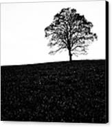 Lone Tree Black And White Silhouette Canvas Print