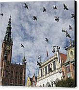Long Market With Pigeons, Town Hall Canvas Print by Keenpress
