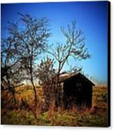 Lost Shed Canvas Print