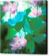 Lotus--ethereal Impressions II 20a1 Canvas Print