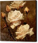 Love Letter II Canvas Print by Jai Johnson