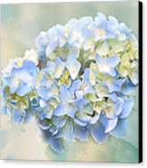 Love Letter Vii Hydrangea Canvas Print by Jai Johnson