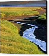Low Tide At Sunset, Minas Basin, Kings Canvas Print by Ron Watts