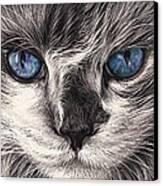 Mad Cat Canvas Print by Elena Kolotusha