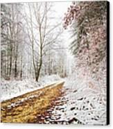 Magic Trail Canvas Print by Debra and Dave Vanderlaan