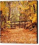 Magical Autumn Canvas Print by Cheryl Davis