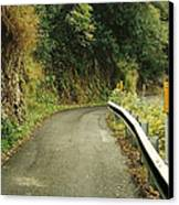 Maui Highway Canvas Print by Marilyn Wilson