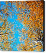 Meet In Heaven. Autumn Glory Canvas Print by Jenny Rainbow