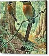 Mexican Motmots Are Perched On Jungle Canvas Print by Walter A. Weber