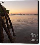 Miami And Mangroves Canvas Print by Matt Tilghman