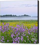Midnight Light With Flowers Canvas Print by Conny Sjostrom