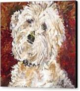 Mini Doodle Portrait Canvas Print by Karen Ahuja