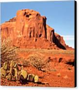 Monument Valley Cactus Canvas Print