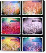Moods Of The Harvest Canvas Print by Kevyn Bashore