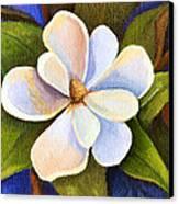 Moon Light Magnolia Canvas Print by Elaine Hodges