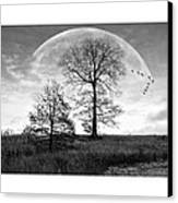 Moonlit Silhouette Canvas Print