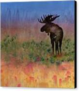 Moose On The Tundra Canvas Print by Carolyn Doe