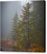 Morning Fall Colors Canvas Print by Mike Reid