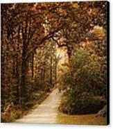 Morning Walk Canvas Print by Jai Johnson