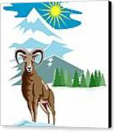 Mouflon Sheep Mountain Goat Canvas Print by Aloysius Patrimonio