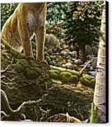 Mountain Lion With Fawn Canvas Print by Anne Wertheim