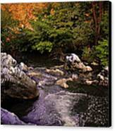 Mountain River With Rocks Canvas Print by Radoslav Nedelchev