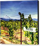 Mt Hood Winery Canvas Print by Vicki Jauron