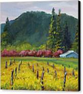 Napa Valley Mustards On Silverado Trail Canvas Print