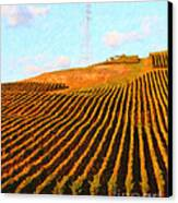 Napa Valley Vineyard . Portrait Cut Canvas Print by Wingsdomain Art and Photography