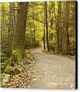 Narrow Way Canvas Print by Gary Suddath