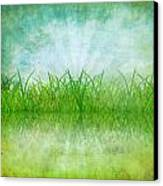 Nature And Grass On Paper Canvas Print by Setsiri Silapasuwanchai