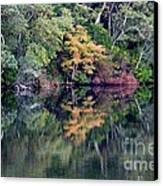 New England Fall Reflection Canvas Print