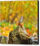 New Hampshire Chipmunk Canvas Print