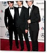Nick Jonas, Joe Jonas, Kevin Jonas Canvas Print by Everett
