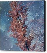 Nighty Tree Canvas Print