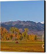 North Boulder County Colorado Front Range Panorama With Horses Canvas Print by James BO  Insogna