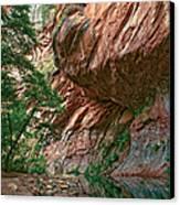Oak Creek Canyon Walls Canvas Print by Dave Dilli