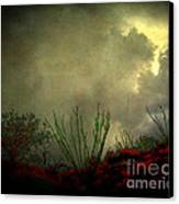 Occotillo And Desert Storm Canvas Print
