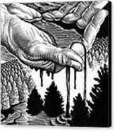 Oil Pollution Canvas Print by Bill Sanderson