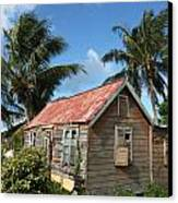 Old Chattel House Canvas Print by Barbara Marcus