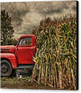 Old Ford Truck Canvas Print by Pat Abbott