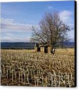 Old Hut Isolated In A Field. Auvergne. France Canvas Print by Bernard Jaubert