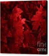 Old Red Canvas Print by Marjorie Imbeau