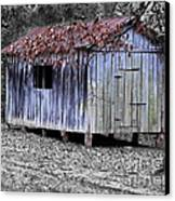 Old Weathered Shed Canvas Print