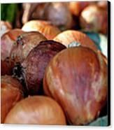 Onions At A Roadside Market Canvas Print by Toni Hopper