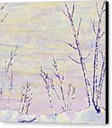 Opalescent Winter Canvas Print by Sharon Gill