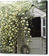 Open Dutch Door On Shed Canvas Print by Roberto Westbrook