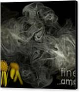 Optimisticly Dense Daisies Canvas Print by Vicki Ferrari Photography